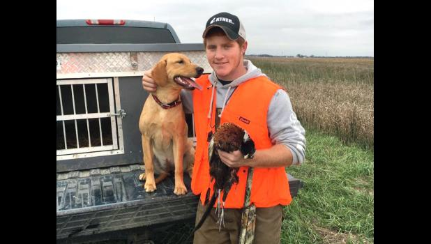 Pheasant hunting with Ruby, his prized lab
