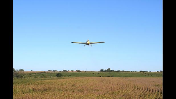 Local pilot Ryan Stott makes a pass over a field with cover crop seeds for Iowa Cover Crop, a business founded in 2014 by Greene County farmers James Holz and Bill Frederick. Cover crops are seeded into standing corn or soybeans before harvest, helping to keep nutrients from leaching into surface water in the fall and spring. In 2016, cover crops stopped 1,375 tons of nitrogen from flowing into Iowa's streams and rivers. CONTRIBUTED PHOTOS