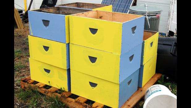 """New boxes to be used in the collection of honey sit in the open air Tuesday at Bee Mindful in Scranton. Calder has been rebuilding boxes taken by the city of Scranton during an aggressive push to abate """"nuisance"""" properties around town."""