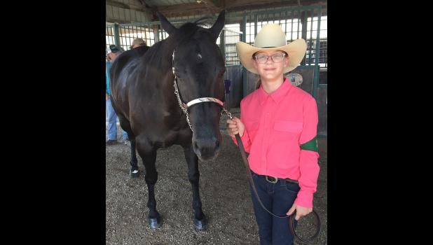 Hicks' granddaughter, Laura, will be in her second year of showing horses at the Greene County Fair, which will be held July 9-16.
