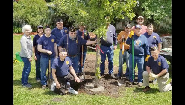 Members of Jefferson's Floyd W. Brown Post 11 of the American Legion and other volunteers planted a burr oak tree last week in the Memorial Garden on East Lincoln Way to finish the efforts of another local military support group started in 1922. Pictured kneeling: Dallas Schrader, left, and Elvin Thompson. Standing, from left: Janet Sabus, of the Jefferson Garden Club; and Legionnaires Barb Labate, Danny Marks, Earl Cherryholmes, Louis Swanson, Kenny Arbuckle, Tom Hammel, Craig Presley, Jim Andrew, Kurt Kri