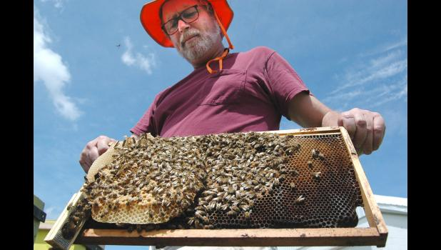 """It's just me and the bees out there,"" says Cail Calder, a commercial beekeeper based in Scranton. ""It hasn't made me antisocial ... I was always that way. I could have just as easily been a hermit."" Pesticides, pests and pathogens pose a triple-threat to his bees' existence, and the threats seem to grow each year. ANDREW McGINN 
