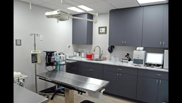 High overhead, low returns: the surgery room at Fields' new veterinary clinic is outfitted with expensive medical equipment that will take years of neutering to pay off. For that reason and more, fewer vets are owning their own clinics.