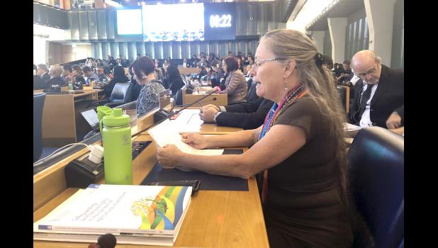 Patti Naylor, of Churdan, speaks Oct. 17 in Rome during the United Nations Committee on World Food Security annual meeting. CONTRIBUTED PHOTO