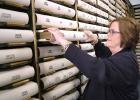 """County Recorder Marcia Tasler grabs a book containing deeds off the shelf in her office's vault. A $100,000 project would digitize some 91,000 land records dating back to 1854 and make them available online. """"It's the world we're in now,"""" she says. ANDREW McGINN 