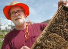 Cail Calder, owner of Bee Mindful in Scranton, talks about beekeeping while nonchalantly holding onto live bees. Bees are vital to the nation's food supply and economy, but the odds are stacked against them. Bees and beekeepers were handed a rare victory last month when the EPA announced that 12 products containing neonic pesticides, widely used by farmers, will be pulled from the market. ANDREW McGINN | JEFFERSON HERALD PHOTOS